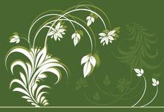 Flor e folhas ilustração royalty free