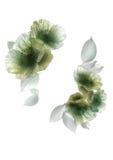 Flor e folhas compostas fotos de stock