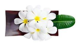Flor e folhas do Plumeria no prato de madeira Imagens de Stock