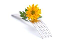 Flor e forquilha isoladas fotografia de stock