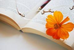 Flor e livro do cosmos Fotografia de Stock