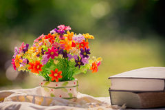 Flor e livro na natureza Foto de Stock
