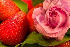 Flor e morango de Rosa foto de stock