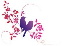 Flor e pássaro Imagem de Stock