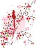 Flor e pássaro de cereja ilustração royalty free