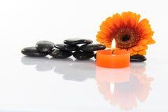 Flor e pedras Imagens de Stock