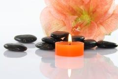 Flor e pedras Imagem de Stock Royalty Free