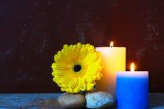 Flor e velas amarelas Imagem de Stock Royalty Free