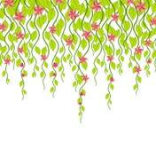 Flor e videiras Foto de Stock