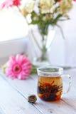 Flor em botão chinesa verde do chá que floresce no copo de chá de vidro Profundidade do café da manhã da manhã de campo rasa Imagens de Stock