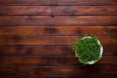 Flor em pasta sobre o fundo de madeira da tabela Fotografia de Stock Royalty Free