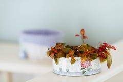 Flor em um potenciômetro Fotos de Stock Royalty Free