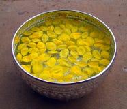 Flor en 01 tailandeses Imagen de archivo