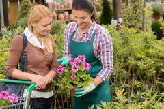 Flor en conserva del cliente de la demostración del trabajador del centro de jardinería Foto de archivo
