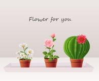 Flor en crisol Imagenes de archivo
