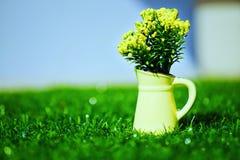 Flor en crisol Imagen de archivo libre de regalías