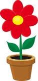Flor en el crisol Fotografía de archivo libre de regalías