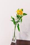 Flor en el florero foto de archivo