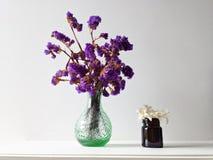 Flor en el florero Fotos de archivo libres de regalías