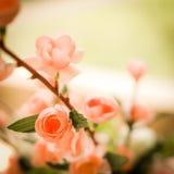 Flor en estilo del vintage Fotografía de archivo libre de regalías