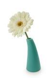 Flor en florero Fotos de archivo libres de regalías