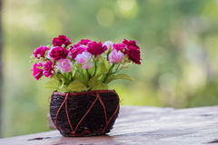 Flor en florero con el bokeh verde Fotografía de archivo libre de regalías