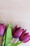 Flor en fondo de madera Fotografía de archivo libre de regalías