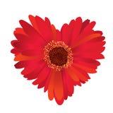 flor en forma de corazón