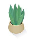 Flor en icono del pote Naturaleza verde, hoja, cultivando un huerto Fotografía de archivo libre de regalías