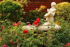 Flor en jardín Fotos de archivo libres de regalías