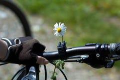 Flor en la bici de la mujer Fotos de archivo