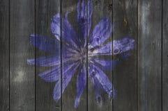 Flor en la cerca de madera vieja Foto de archivo