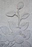 Flor en la pared de la roca Imagen de archivo libre de regalías