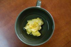 Flor en la parte inferior de la taza Foto de archivo libre de regalías