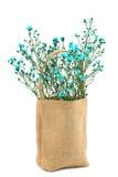 Flor en saco de la arpillera fotografía de archivo libre de regalías