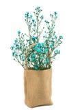 Flor en saco de la arpillera Fotos de archivo libres de regalías