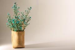 Flor en saco de la arpillera Fotos de archivo