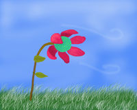 Flor en tiempo ventoso Imágenes de archivo libres de regalías