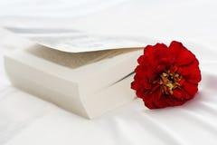 Flor en el libro fotografía de archivo libre de regalías