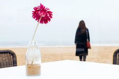 Flor encaracolado do café da praia da neve da costa do humor do cabelo longo do revestimento da mola do sorriso da mulher do retr imagem de stock royalty free