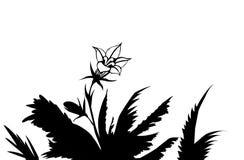 Flor entre las hierbas stock de ilustración
