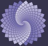 Flor espiral de la lavanda Fotografía de archivo libre de regalías