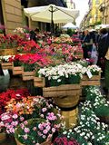 FLOR event in Turin city, Italy. Colourfulo flowers, visitors and beauty stock image
