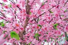 Flor falsa de Sakura, cierre para arriba Imagenes de archivo