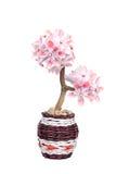 Flor fantástica em um potenciômetro Fotografia de Stock Royalty Free