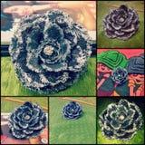 A flor feita das calças de brim, recicla Fotografia de Stock