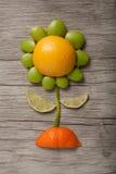 Flor feita dos frutos Imagem de Stock Royalty Free