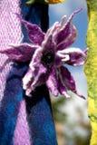 Flor feito a mão do feltro grosso Imagens de Stock Royalty Free