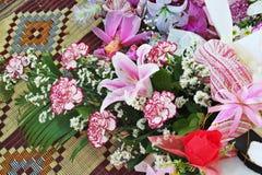Flor, flora, diente de bebé, floración, flor Imagen de archivo libre de regalías