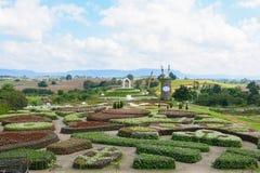 Flor floreciente hermosa en parque de la flora Imágenes de archivo libres de regalías